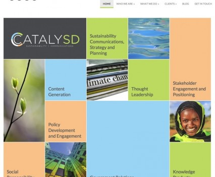 CatalySD Website