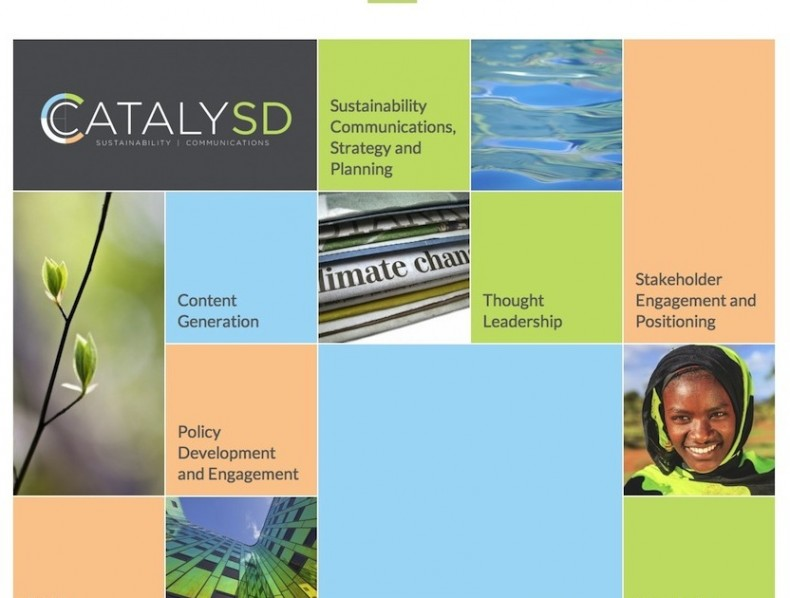 Website for CatalySD