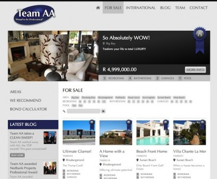 TeamAA Website