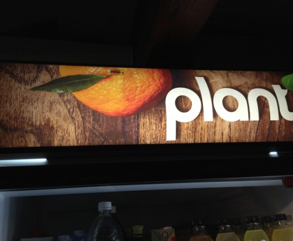 Plant Fridge Sticker