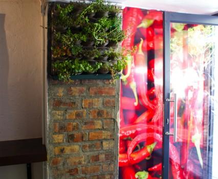 Plant Wallpaper Mural